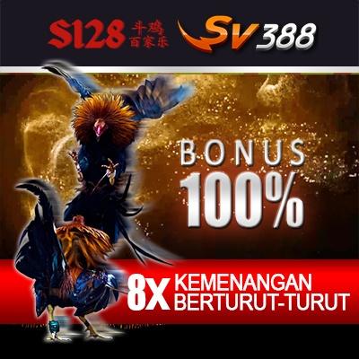 Sabung Ayam Online S128, SV388